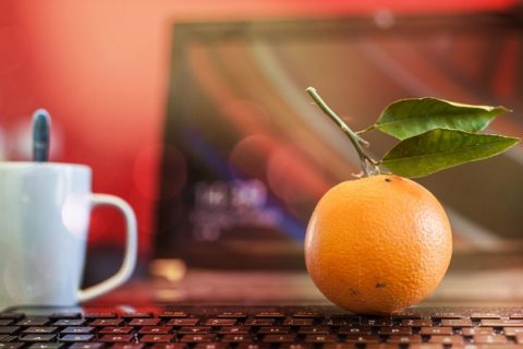 orange-287179_640